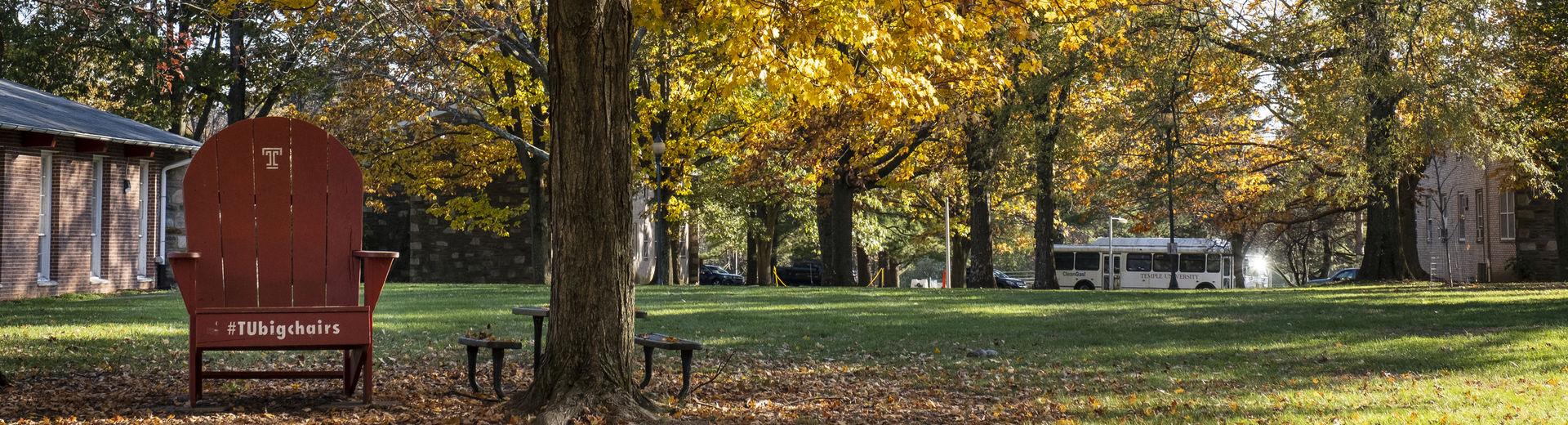 Big chair under a tree